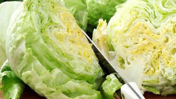 5 tips voor het kweken van ijsbergsla