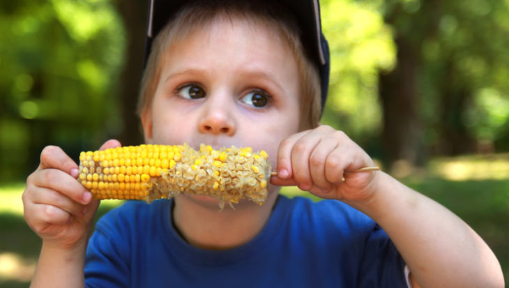 Tips voor het kweken van maïs