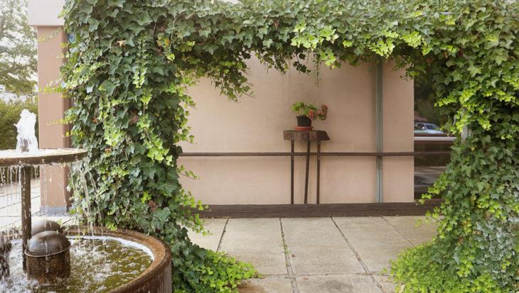 Schaduw en privacy in de tuin